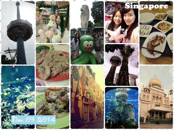 【新加坡】Day 2。阿拉伯文化區.超級樹.超級英雄纜車.S.E.A.海洋館.牛車水